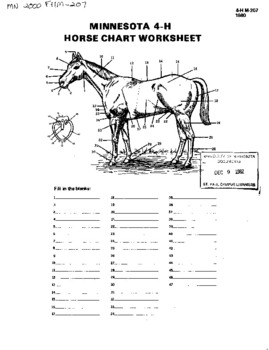 Minnesota 4-H Horse Chart Worksheet