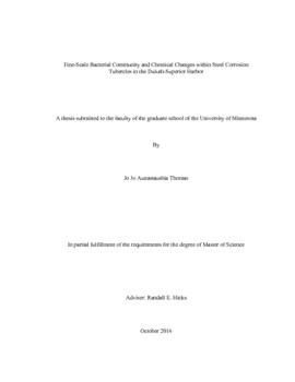 economic freedom engineering site edu type pdf