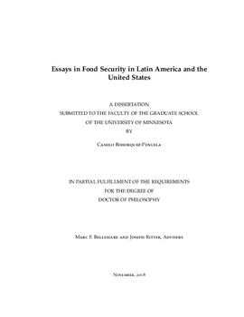 Essays in Food Security in Latin America and the United States